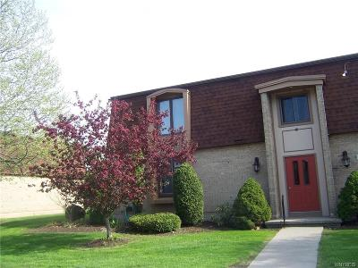 Amherst Condo/Townhouse A-Active: 155 Charter Oaks Drive #3