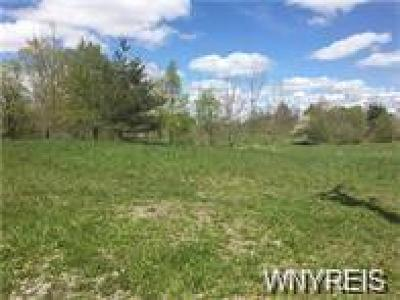 Genesee County Residential Lots & Land A-Active: V/L Chick