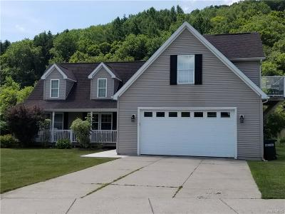 Ellicottville Single Family Home A-Active: 11 Elk Creek Drive