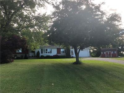 Warsaw Single Family Home A-Active: 4034 State Route 20a W West
