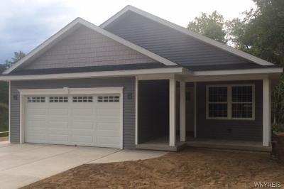 Lancaster Single Family Home A-Active: 660 Schwartz Road