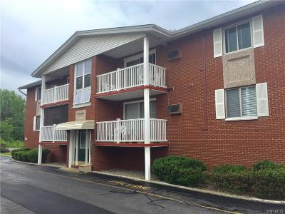 West Seneca Condo/Townhouse A-Active: 1150 Indian Church Road #9