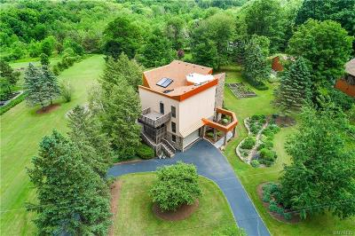 Orchard Park Single Family Home A-Active: 6985 Chestnut Ridge Road