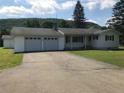Ellicottville Single Family Home A-Active: 6389 Route 242 East
