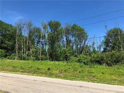 Chautauqua County Residential Lots & Land A-Active: 00 Tarbox