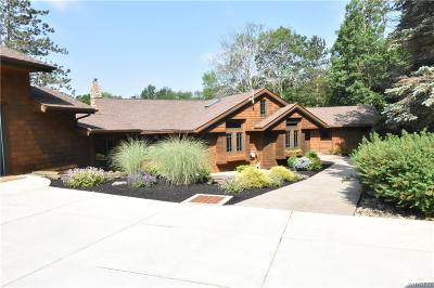 Colden Single Family Home A-Active: 8659 Finch Road #1
