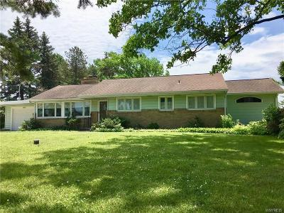 Erie County Single Family Home A-Active: 11837 Broadway Street