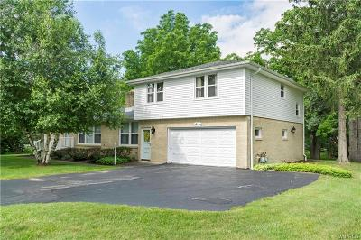 Orchard Park Multi Family 2-4 A-Active: 7 Boldt Court
