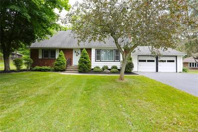 Orchard Park Single Family Home U-Under Contract: 6 Bruce Drive