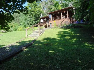 Cattaraugus Single Family Home A-Active: 9344 Potter Hill Road