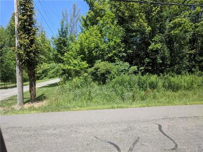 Angola Residential Lots & Land A-Active: Vl Delaware Street