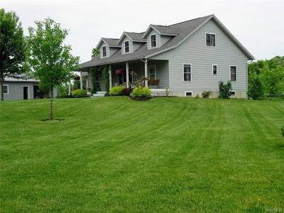 Orleans County Single Family Home C-Continue Show: 3129 Fruit Avenue