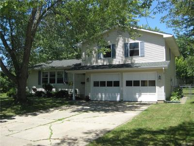 Hamburg Single Family Home A-Active: 159 Browning Drive