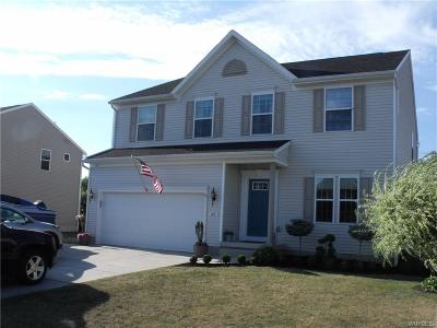 Grand Island Single Family Home A-Active: 185 Waterford Park