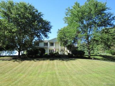 Genesee County Single Family Home A-Active: 2 Valle Drive