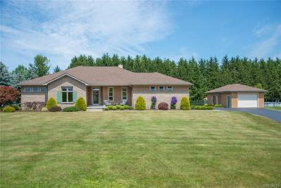 Erie County Single Family Home A-Active: 11514 Stolle Road