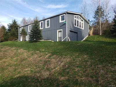 Ellicottville Single Family Home A-Active: 5556 Bryant Hill Road