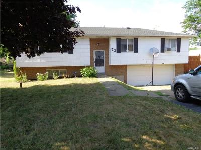 Single Family Home U-Under Contract: 73 Parkview Drive