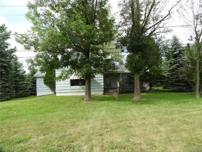 Single Family Home A-Active: 12328 Genesee Street