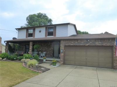 Lancaster Single Family Home A-Active: 790 Ransom Road