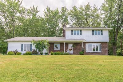 North Collins Single Family Home U-Under Contract: 2371 Shirley Road
