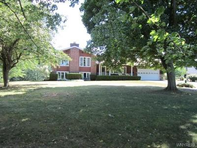 Genesee County Single Family Home A-Active: 6984 Warboys Road