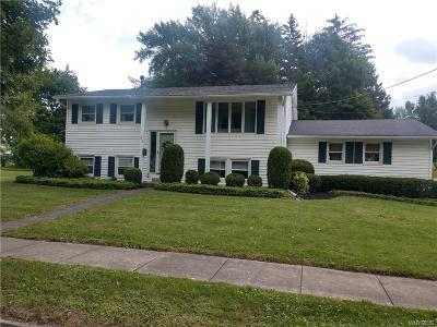 Warsaw Single Family Home A-Active: 242 Linwood Avenue