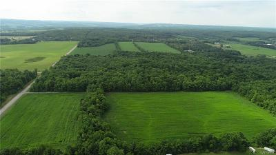 Genesee County Residential Lots & Land A-Active: Broadway Road