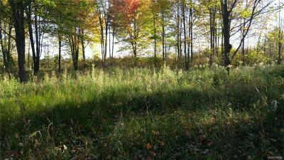 Niagara County Residential Lots & Land A-Active: V/L Cambria Wilson Road West