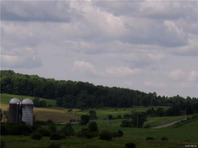 Allegany County, Cattaraugus County Residential Lots & Land A-Active: Corbin Hill (Cty Rd. 31) Road