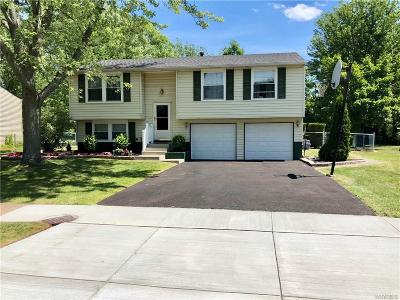 Grand Island Single Family Home A-Active: 293 Tracey Lane