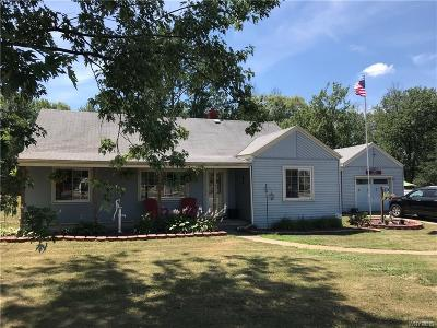 Hamburg Single Family Home A-Active: 4173 Sowles Road