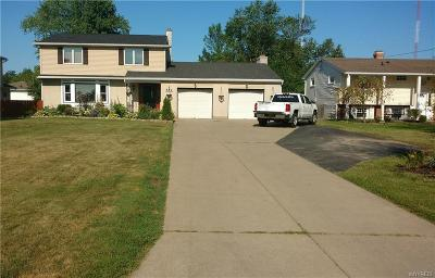 Grand Island Single Family Home A-Active: 552 East River Road