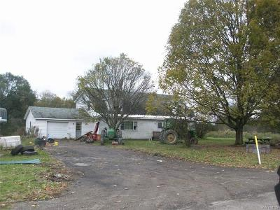Cattaraugus Single Family Home A-Active: 10463 Hammond Hill Road