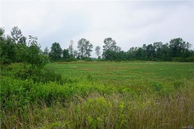 Niagara County Residential Lots & Land A-Active: V/L Tonawanda Creek Rd