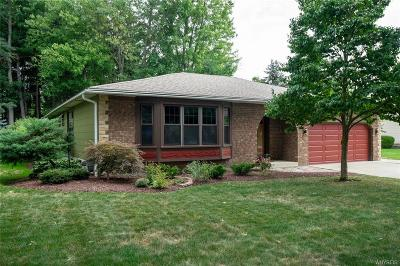 Amherst Single Family Home A-Active: 115 Misty Lane
