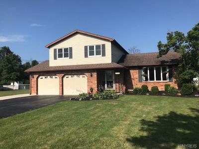 Lewiston Single Family Home A-Active: 4430 Creek Road