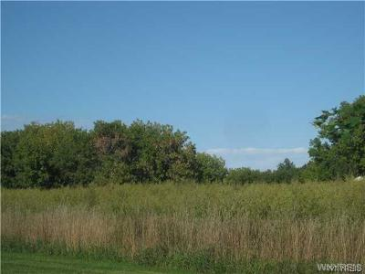 Orchard Park Residential Lots & Land A-Active: Vl Milestrip Road