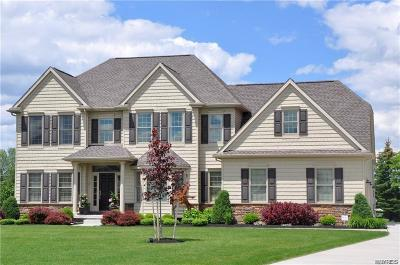 Orchard Park Single Family Home A-Active: 41 Woodthrush