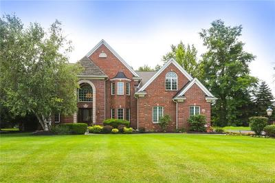Erie County Single Family Home A-Active: 9610 The Maples