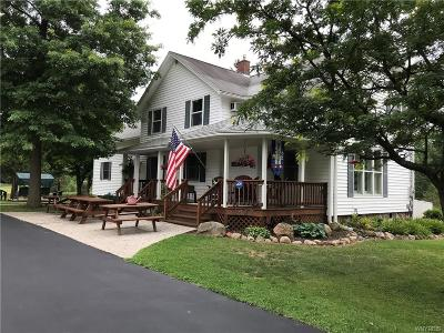 Erie County Single Family Home A-Active: 1627 Bailey Road