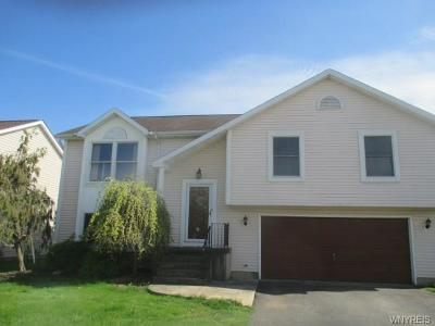 Lancaster Single Family Home A-Active: 76 Doehaven Circle
