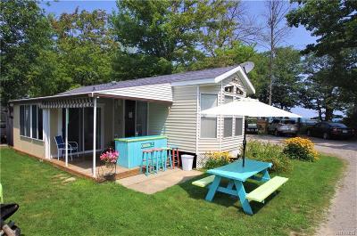 Buffalo, Evans, Hamburg Single Family Home A-Active: 9456 Lakeshore Rd Lot #108