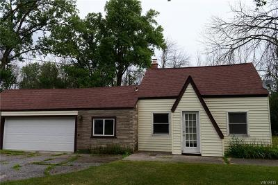 Orchard Park Single Family Home A-Active: 141 Reppien Place