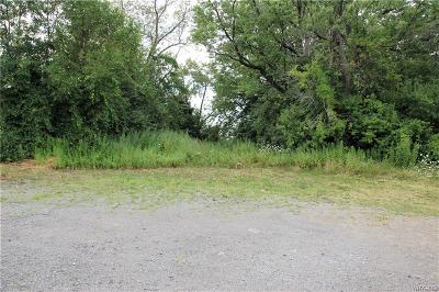 Buffalo, Evans, Hamburg Residential Lots & Land A-Active: 00 Lakeshore Road