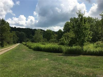 Erie County Residential Lots & Land A-Active: 8219 Boston State Road
