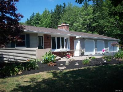 Erie County Single Family Home A-Active: 7580 Lower East Hill Road