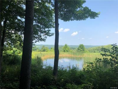 Attica Residential Lots & Land A-Active: 3124 Lindsey Road