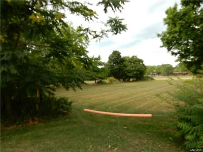 Erie County Residential Lots & Land A-Active: 10344 Main Street