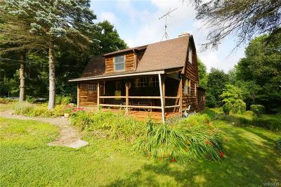 Genesee County Single Family Home A-Active: 10917 Warner Road